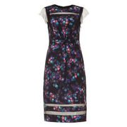 Phase Eight Damen Kleid Kacy mit Blumenprint, beere/schwarz PHASE EIGHT