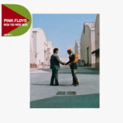 Pink Floyd Wish You Were Here Rock CD WARNER MUSIC GROUP GERMANY