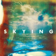The Horrors Skying Pop CD INDIGO MUSIK GMBH