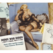 Various - Diddy Wah Diddy......Ain´t A Town, Ain´t A City - (CD) BEAR FAMILY RECORDS GMBH