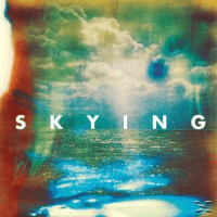 The Horrors Skying Pop CD
